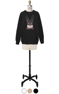 rabbit-mask-cat sweatshirts